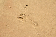 Child foot step on sand Stock Photo