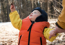 Child in forest royalty free stock images