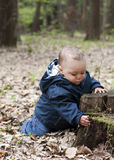 Child in forest royalty free stock photo