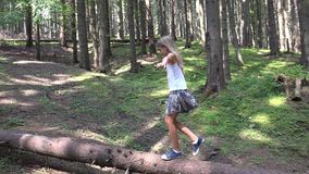Child in forest walking tree log kid playing camping adventure girl outdoor wood.  stock video