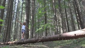 Child in Forest Walking Tree Log Kid Playing Camping Adventure Little Girl Outdoor Wood stock video footage