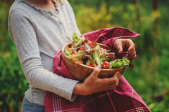 Child with fresh farm organic salad in wooden plate in summer garden Royalty Free Stock Photos