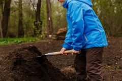 Child is gaining ground with a shovel royalty free stock photo