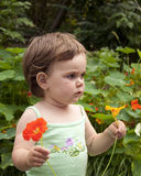 Child in the garden. Little girl  in a green top holding  red and yellow flower in a garden Stock Photography