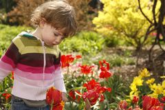 Child in the garden Royalty Free Stock Image