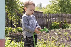 Child in the garden watering flowers stock images