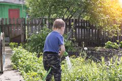 Child in the garden watering flowers royalty free stock photos