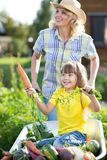 Child in the garden wheelbarrow with fresh vegetables outdoor. Mother is carrying her daughter in cart. Royalty Free Stock Image