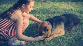 Child and  German Shepherd Royalty Free Stock Photography