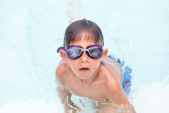 Child getting ready to train in swimming Royalty Free Stock Photography