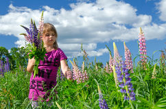 Child girl collects the flower Royalty Free Stock Photos