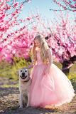 Child girl with dog in blooming garden Stock Photography