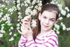 Child girl enjoying blossom. Pretty child girl and spring cherry blossom Royalty Free Stock Image