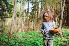 Child girl exploring nature in early spring forest. Kids learning to love nature. Teaching children about seasons changing. Warm weather Royalty Free Stock Images