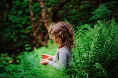 Child girl exploring nature in summer forest Stock Image