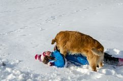 Child girl and dog are rolling on snow.Winter fun stock photography