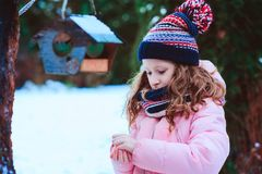Child girl feeding birds in winter. Bird feeder in snowy garden, helping birds during cold season royalty free stock images
