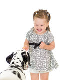 Child girl feeding dog isolated Stock Photos