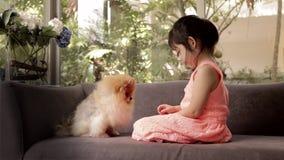 Child, Girl, Feeding Food to Dog