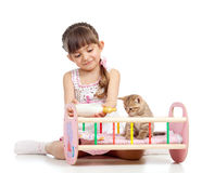 Child girl feeding and playing kitten cat Stock Photos