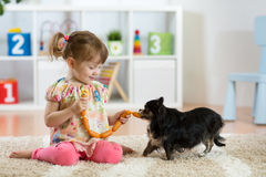 Child girl feeding sausages to her dog on floor in nursery. stock photography