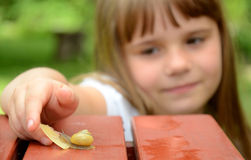 Child girl feeding snail Royalty Free Stock Photos