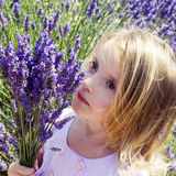 Child girl in floral field of lavender Stock Photos