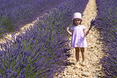 Child girl in floral field of lavender Royalty Free Stock Photo