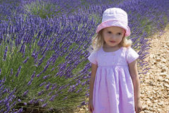 Child girl in floral field of lavender Royalty Free Stock Images