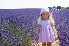 Child girl in floral field of lavender Stock Photo