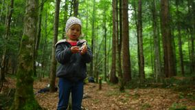 Child girl found a mushroom in the forest stock footage