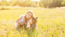 Child girl with her little Yorkshire terrier dog in the meadow royalty free stock photos