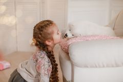 Child girl is holding puppy on her hands near pink the gift boxes royalty free stock photos