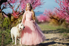 Child girl with labrador dog in blooming garden Royalty Free Stock Photos