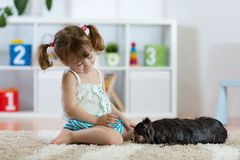Child girl and little dog in the living room royalty free stock photography