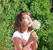 Child (girl) making a big wish!. Child (girl) making a big wish blowing out a large dandelion Royalty Free Stock Photo