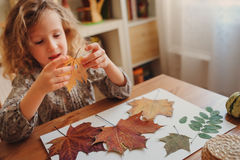 Child girl making herbarium at home, autumn seasonal crafts Stock Photo