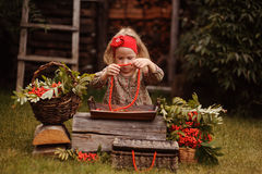 Child girl making rowan berry beads in autumn garden Stock Photo