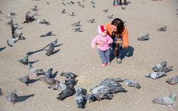 Child girl and mum playing with doves in street Royalty Free Stock Photography