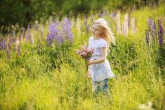 Child girl picking flowers. In a field Stock Photos