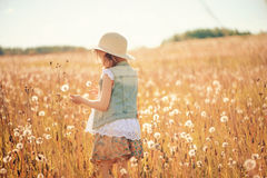 Child girl playing with blow balls on summer field Royalty Free Stock Photo