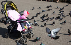 Child girl playing with doves in the city Royalty Free Stock Photo