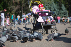 Child girl playing with doves in the city Royalty Free Stock Photography