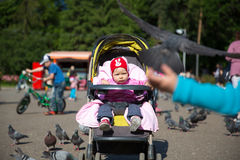 Child girl playing with doves on street Royalty Free Stock Photo