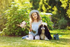 Child girl playing with her spaniel dog in summer garden. Both wearing funny gardener hats, holding bouquet of flowers Stock Images
