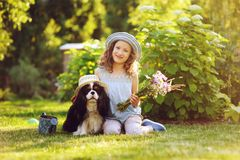 Child girl playing with her spaniel dog in summer garden Stock Photos