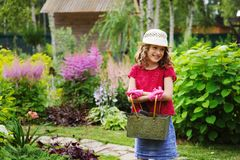 Child girl playing little gardener and helping in summer garden Royalty Free Stock Image