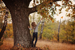 Child girl playing with oak tree on the walk. Child girl playing with old oak tree on the walk Stock Photography