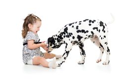 Child girl playing puppy dog Royalty Free Stock Photos