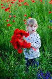 Child girl in poppy field Royalty Free Stock Photos